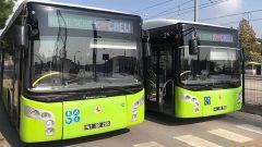 Mutlu Sehir Kocaeli Tabelali Otobusler